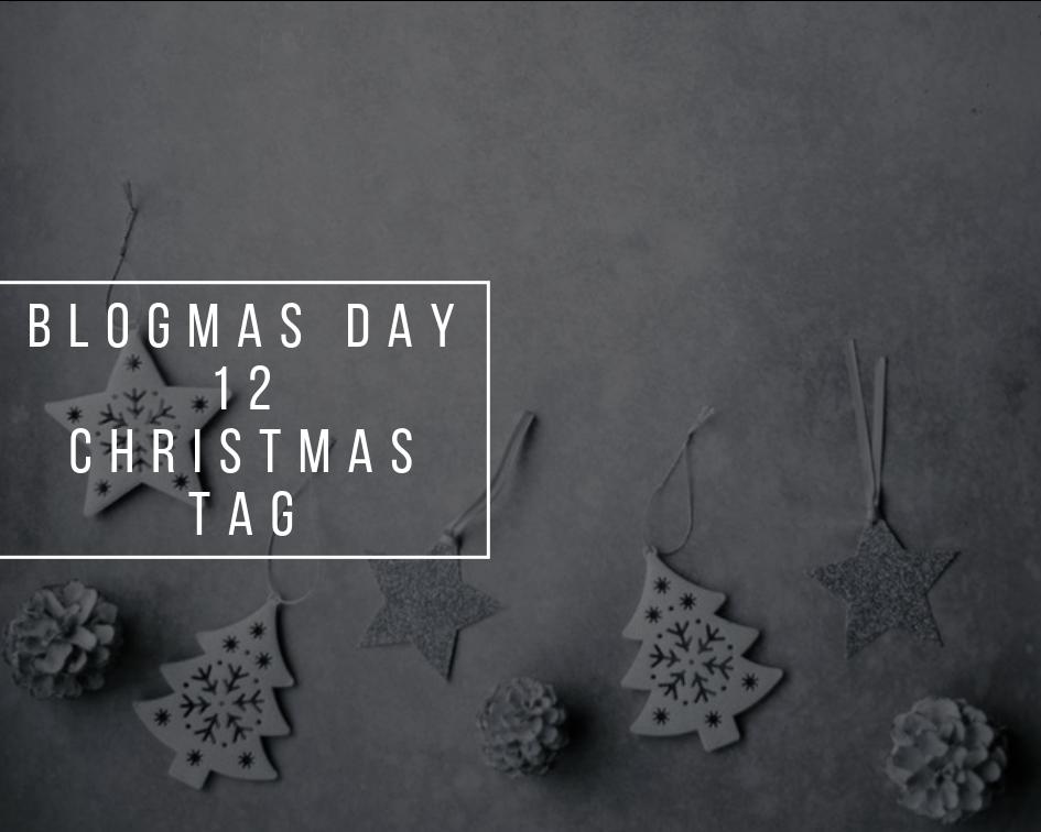 Christmas Tag   Blogmas Day 12